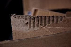 avoid mold growth on cardboard