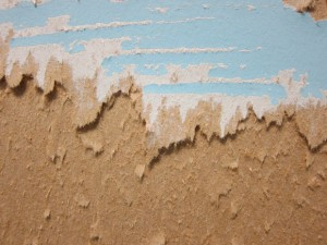 avoid mold growth on drywall